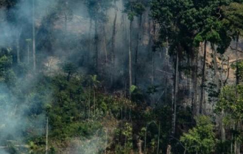 INCÊNDIOS DA AMAZÔNIA E OS PAÍSES RICOS